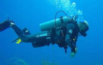 Diving Dominican Republic TEAM